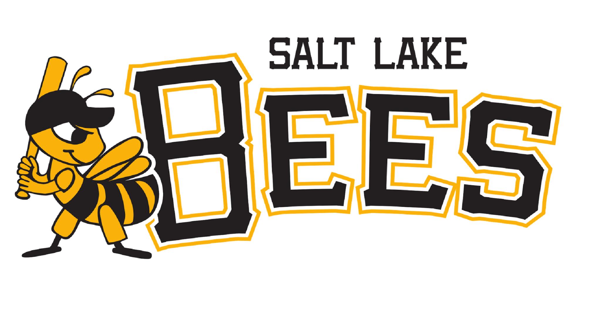 Salt-Lake-Bees-Computer-Wallpaper-HD